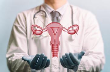 porque menstruamos