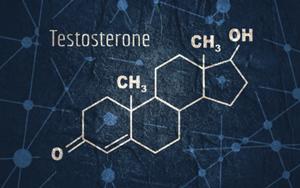 Estructura bioquímica de la testosterona