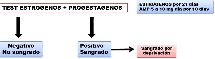 Test de estrógenos + progestágenos