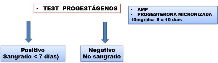 Test de progestágenos